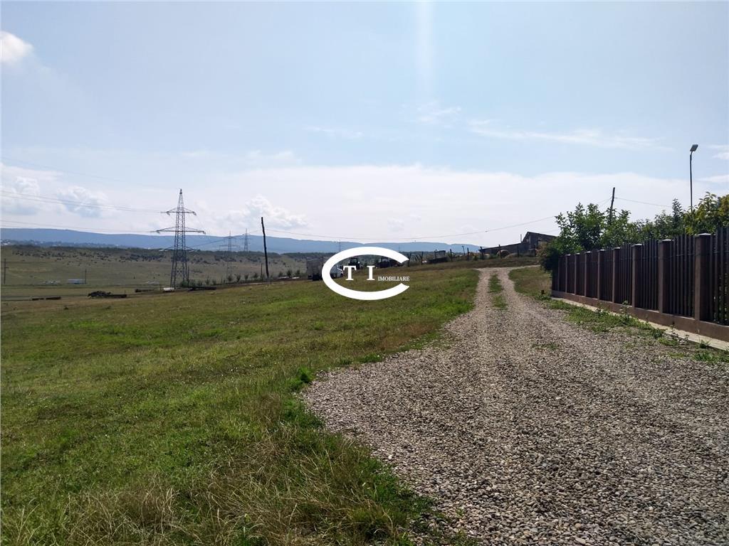 Teren 35000 mp  Dumbrava, destinatie industriala, comision zero